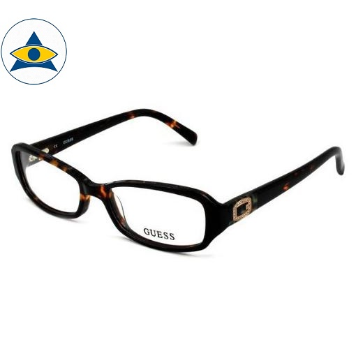 2366 tortise s5316